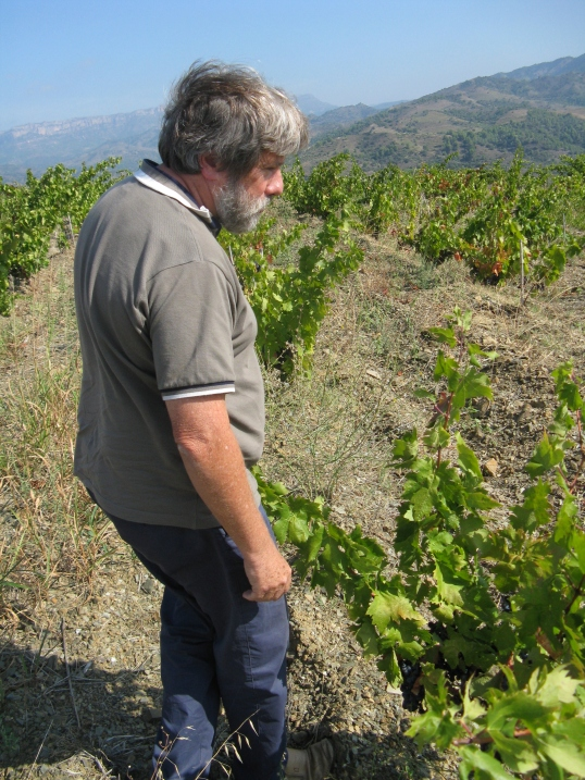 ... Y por supuesto, ¡¡adoro el vino y sus gentes!!