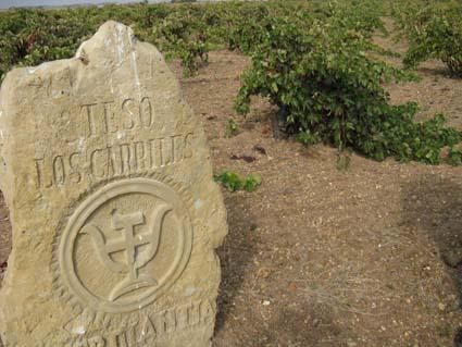 Teso Los Carriles, el viñedo de donde sale Thermanthia, en Toro.